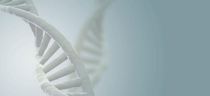 Neuroespacio gene Descubrimiento genético ofrece pistas sobre un cáncer pediátrico Noticias Todas