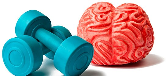 Neuroespacio Memoria-04 ¿Cómo entrenar a tu memoria? Noticias